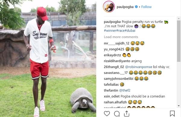 普巴26步助跑贏烏龜:我不是那麼慢!